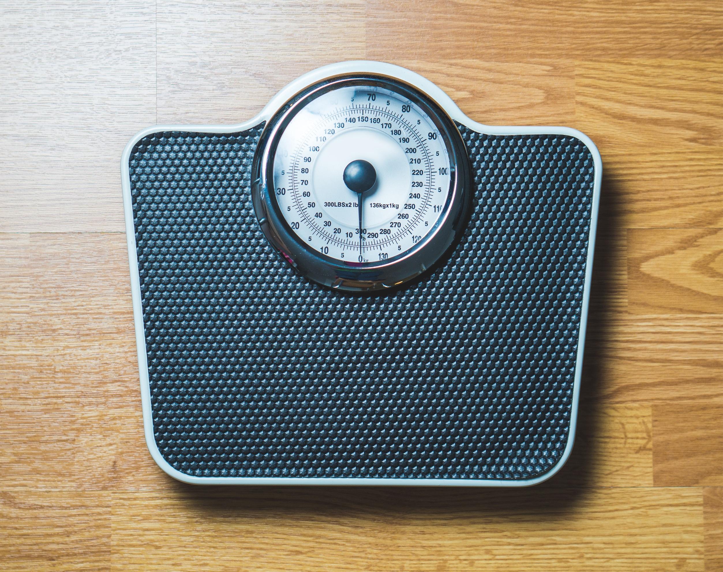 Sovrappeso nei cani